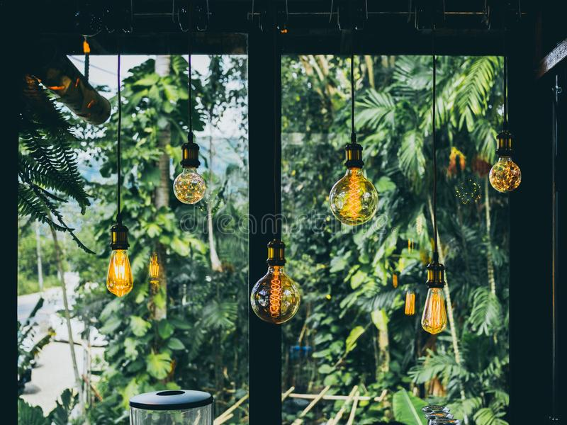 Vintage light bulbs in cafe. Decorative antique edison vintage style light bulbs on green garden in cafe background stock photography