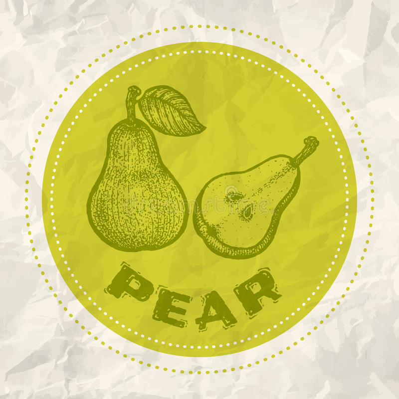 Vintage logo of pear. On crumpled white paper vector illustration