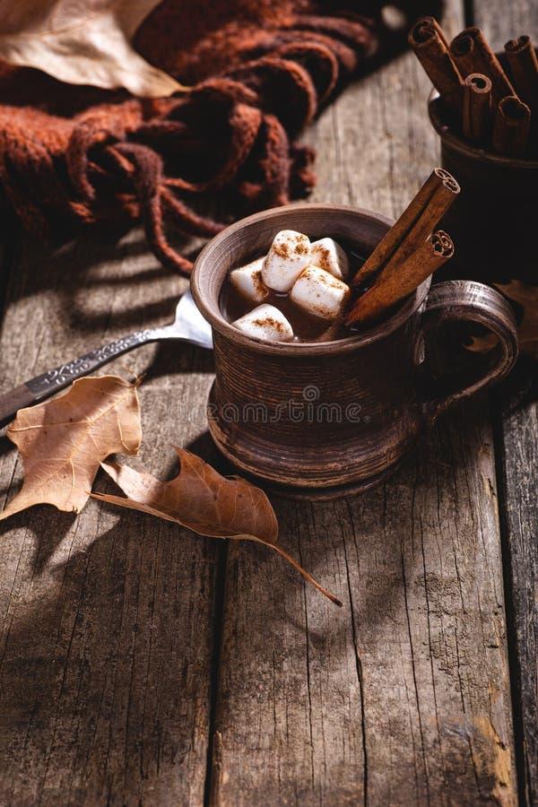 Vintage Mug of Hot Chocolate royalty free stock image