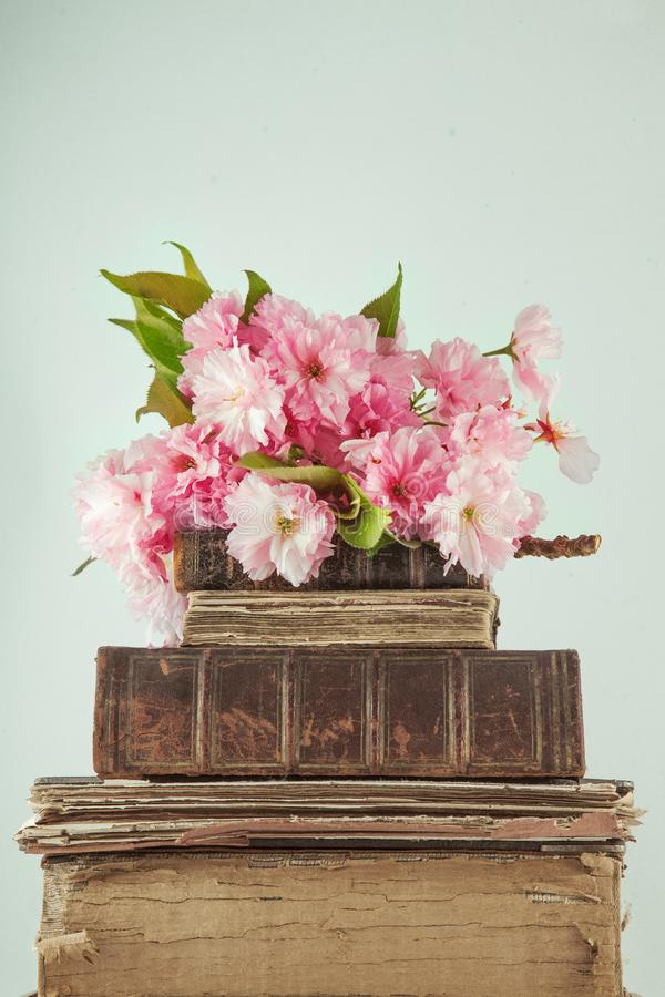 Vintage Novel Books With Bouquet Of Cherry Blossom Flowers On White ...