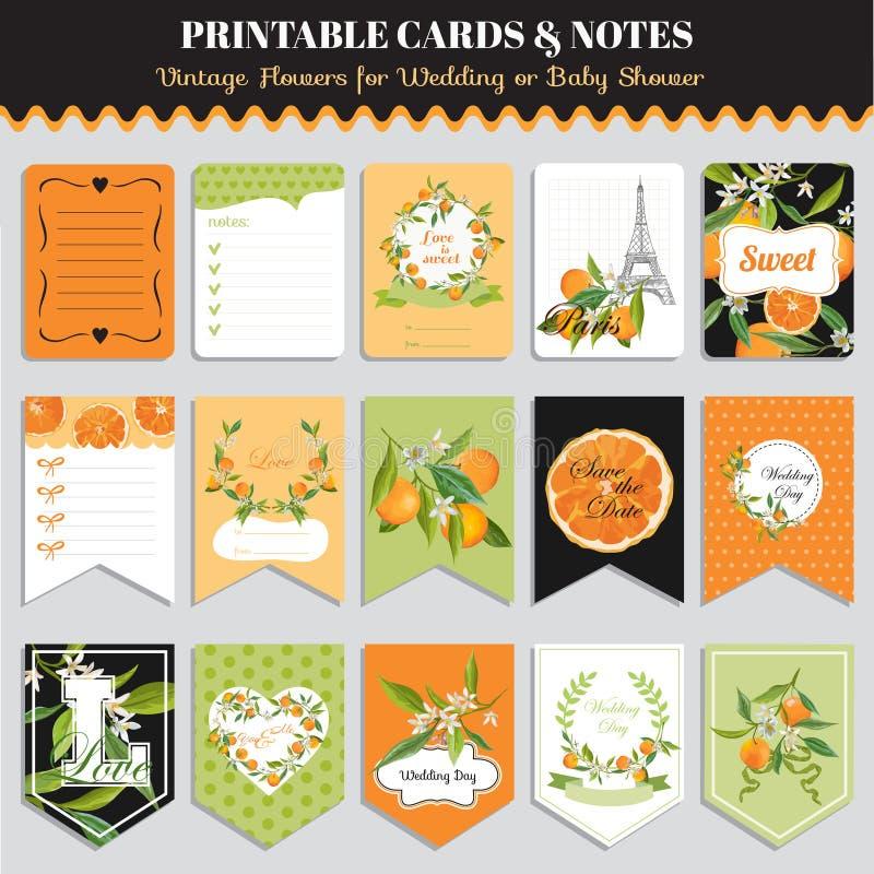 Vintage Orange Flowers Card Set. Birthday, Wedding, Baby Shower stock illustration