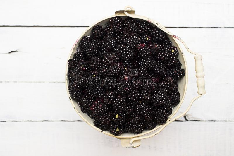 Vintage pail of large, ripe, juicy blackberries. Healthy, nutritious, and organic fruit. royalty free stock images