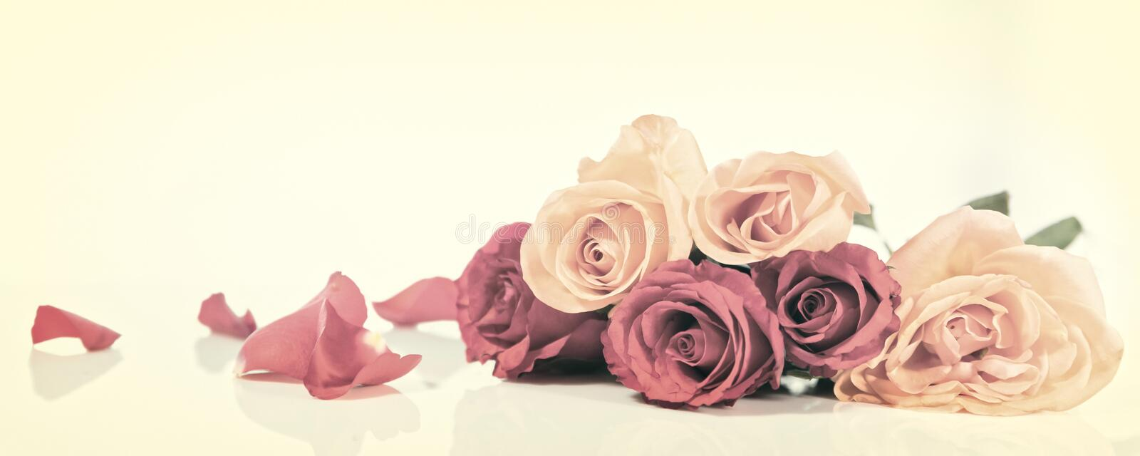 Download Vintage Panorama With Flowers Stock Photo - Image of floral, header: 90728336