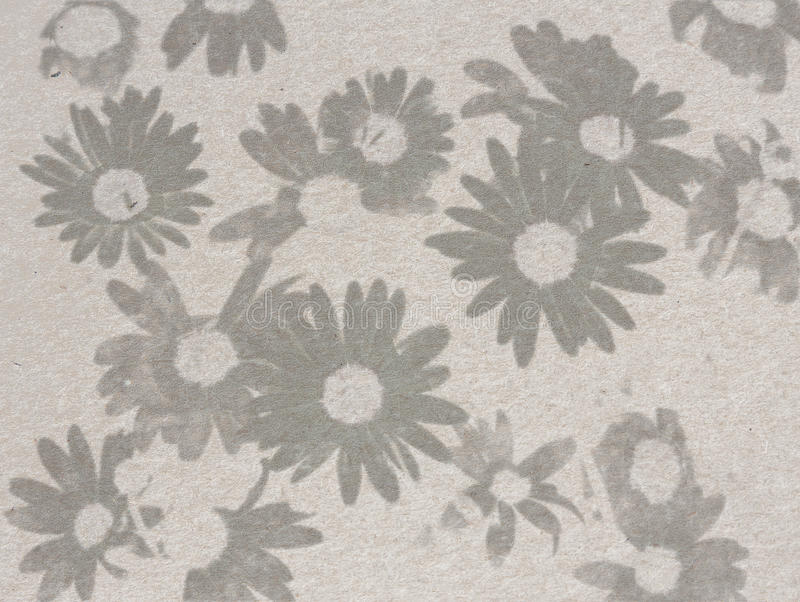 Vintage paper page with daisies sketched