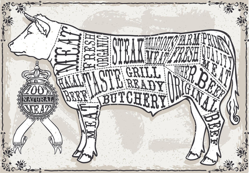 Download Vintage Pastel Page Of Cut Of Beef Stock Photo - Image of crayon, cuisine: 38097824