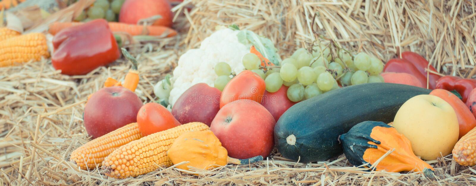 Vintage photo, Fruit and vegetables on straw, agriculture on summer or autumn. Vintage photo, Fresh fruits and vegetables lying on straw, concept of agriculture stock photo