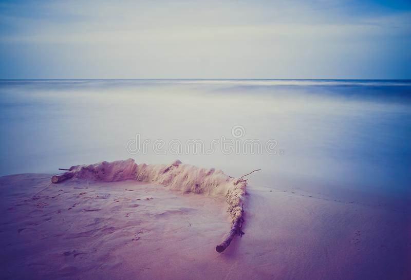 Vintage photo of shore at landscape. Beautiful landscape of seashore at sunset. Photo with vintage mood effect royalty free stock photography