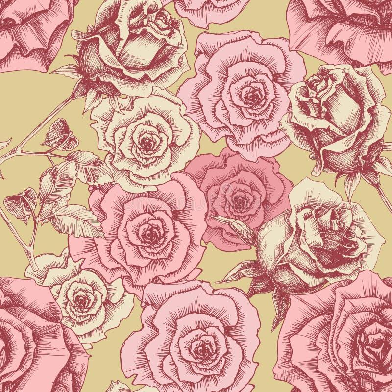 Vintage pink roses pattern vector illustration