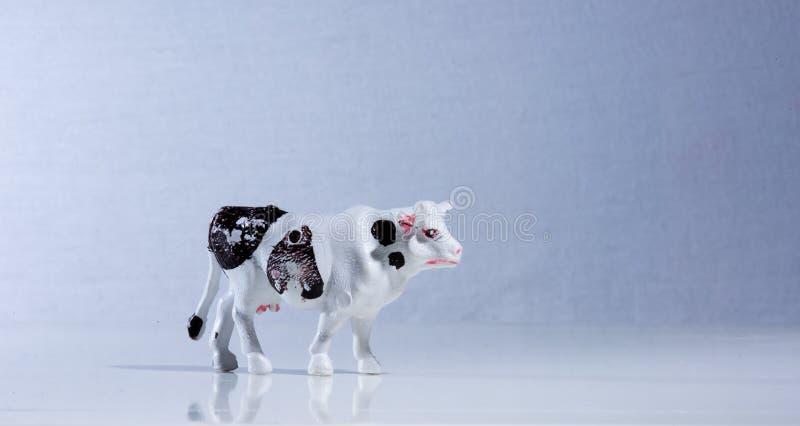 Vintage plastic cow toy figure stock photo