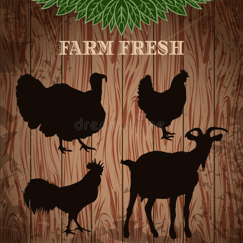 Vintage poster fresh farm with silhouettes of turkey, chicken, rooster and goat on the grunge wood background. royalty free illustration