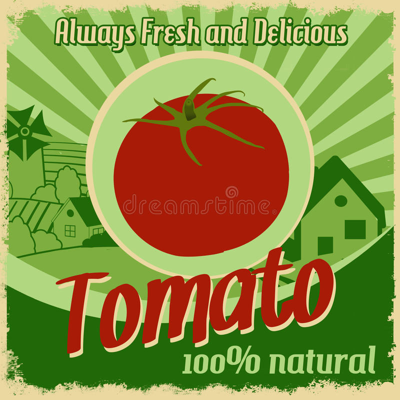 Vintage poster for tomato farm stock illustration