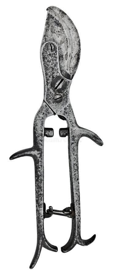 Download Vintage pruning shears stock photo. Image of metal, pair - 7578918