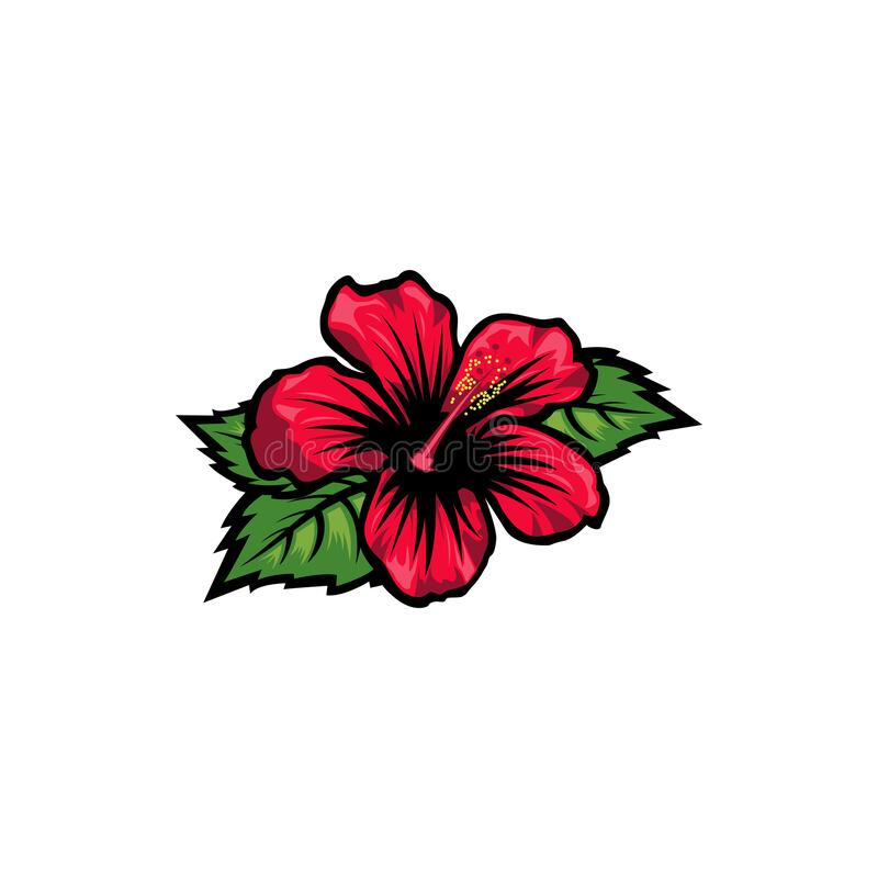 Free Vintage Red Blooming Hibiscus Flowers Concept On White Background Isolated Floral Tropical Flower. Wild Summer Exotic Leaf Stock Image - 190761761