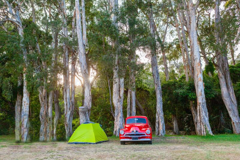 Vintage red car and small green tent under trees. Vintage red car and small green tent under trees at sunset royalty free stock images