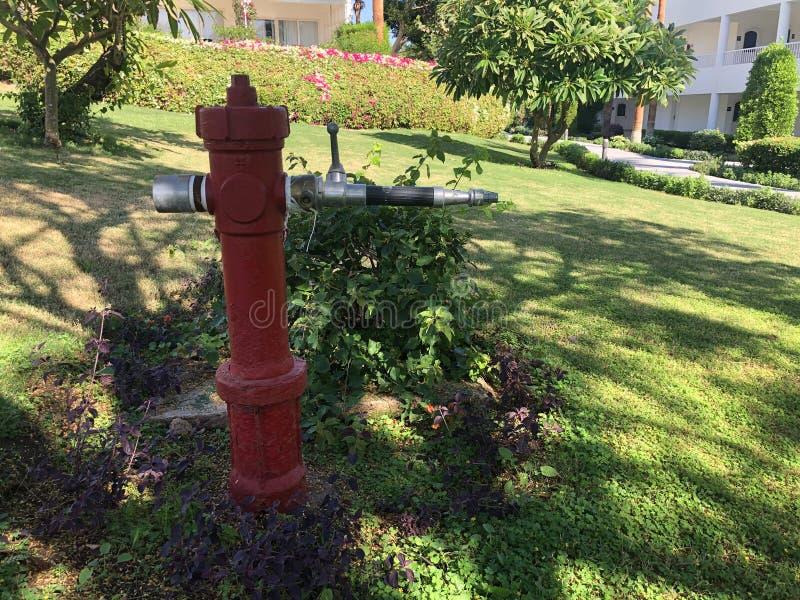Vintage Red Fire Hydrant στον κήπο του ξενοδοχείου, για ασφάλεια και νερό σε περίπτωση πυρκαγιάς στοκ εικόνες με δικαίωμα ελεύθερης χρήσης