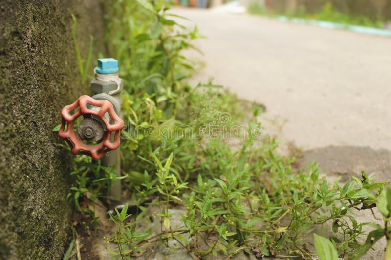 Vintage Red Garden Water Faucet Knob with Green Grass by the Wall - on the Street. Vintage Red Garden Water Faucet Knob with Green Grass by the Wall Thailand stock photography