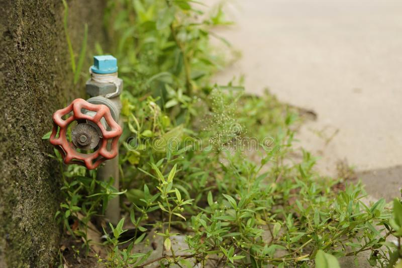 Vintage Red Garden Water Faucet Knob with Green Grass by the Wall - on the StreetRed Garden Water Faucet Knob with Green Grass. Vintage Red Garden Water Faucet stock image
