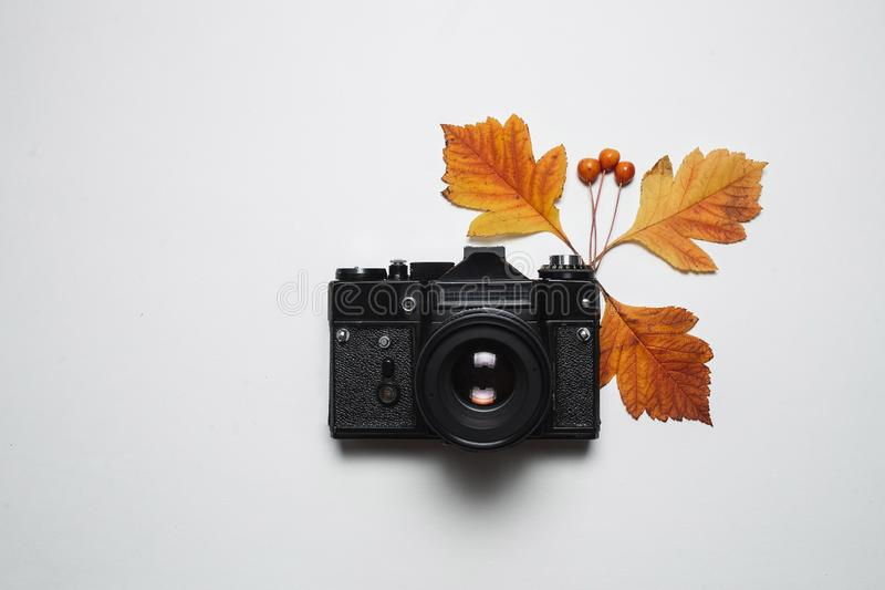 Vintage retro camera and autumn fall leaves. Flay lay, top view. Nature, season photograph and decor concept.  stock images