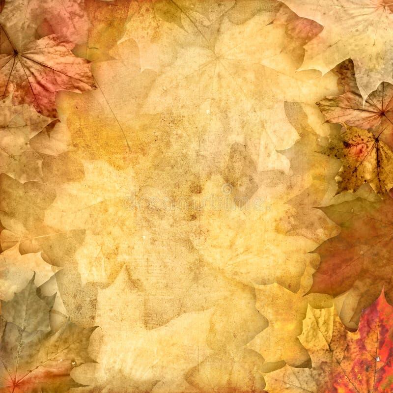 Download Vintage Retro Leafy Background Stock Illustration - Image: 21557422