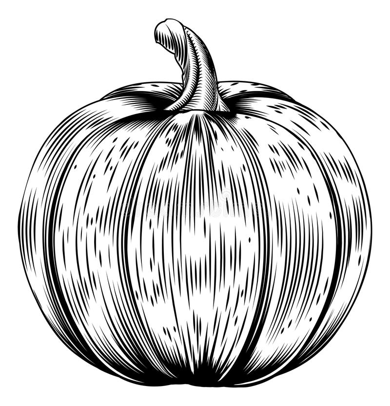 Vintage retro woodcut pumpkin royalty free illustration