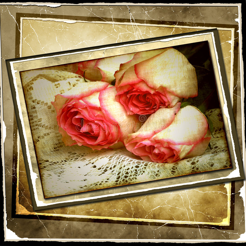 Vintage rose background. Roses with vintage tea stained photo stack background stock images