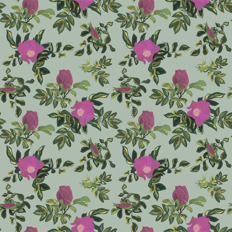 Vintage rose pattern. Wallpaper vintage rose pattern on turquoise background stock illustration