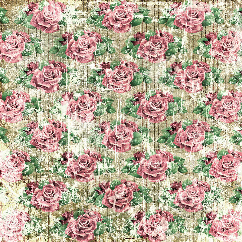 Vintage roses background royalty free illustration