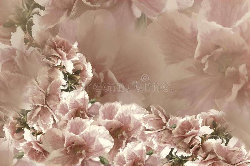 Vintage roses pink-gray-brown flowers. flowers background. floral collage. Flower composition. vector illustration