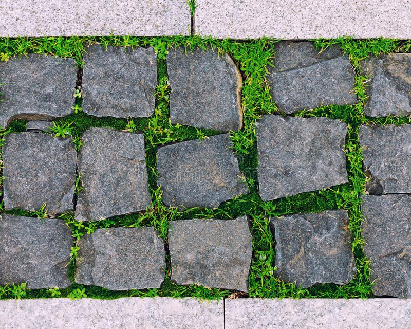 Vintage, Rusty tiled, colorful, decorative stone pavement with green grass and moss. Close-up gray background of sett blocks different texture. Vintage, Rusty royalty free stock photo