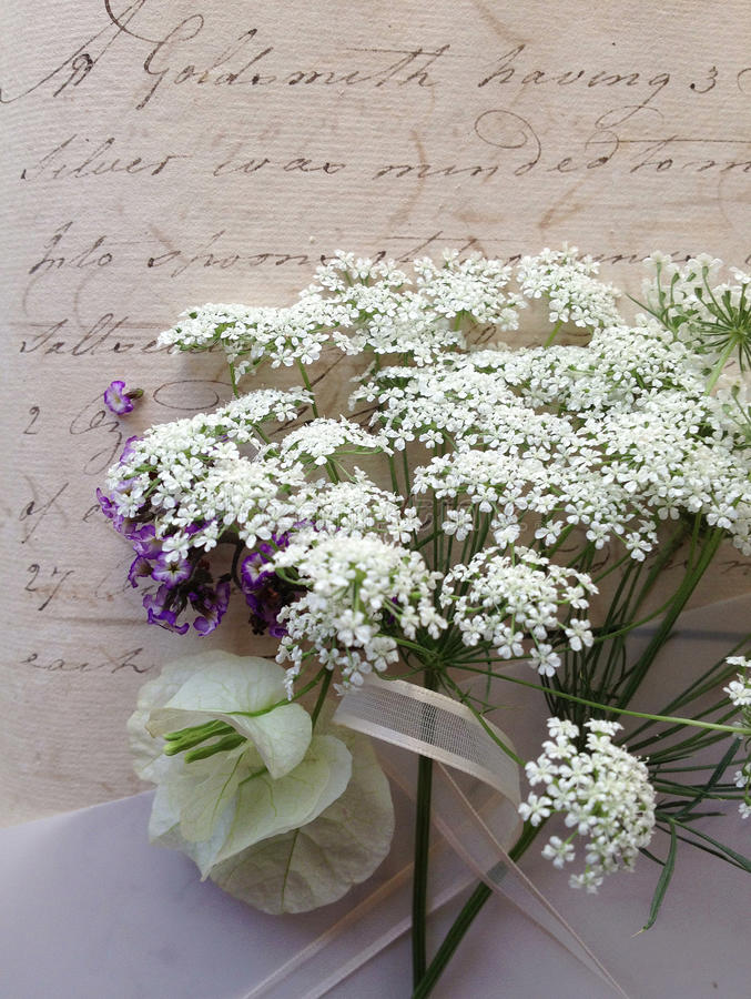 Vintage script with white flowers