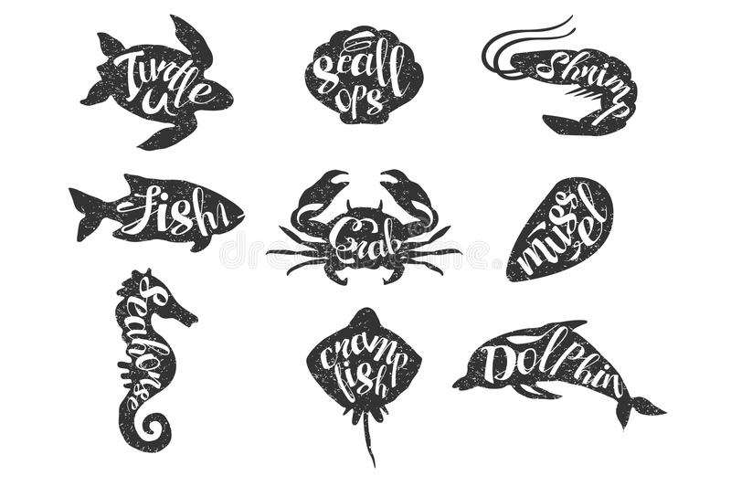 Vintage set of hand drawn sea animals. Silhouette of turtle, scallops, shrimp, fish, crab, mussel, seahorse, crampfish. Dolphin with lettering. Textured vector illustration