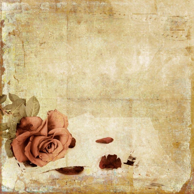 Vintage shabby background with rose royalty free illustration