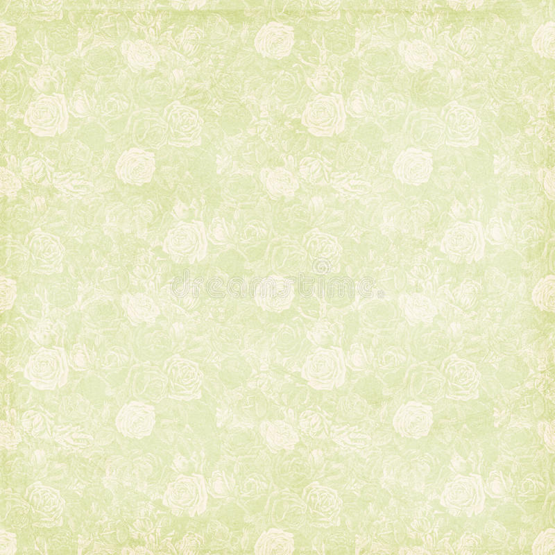 Free Vintage Shabby Chic Green Rose Background Texture Royalty Free Stock Photos - 21746918