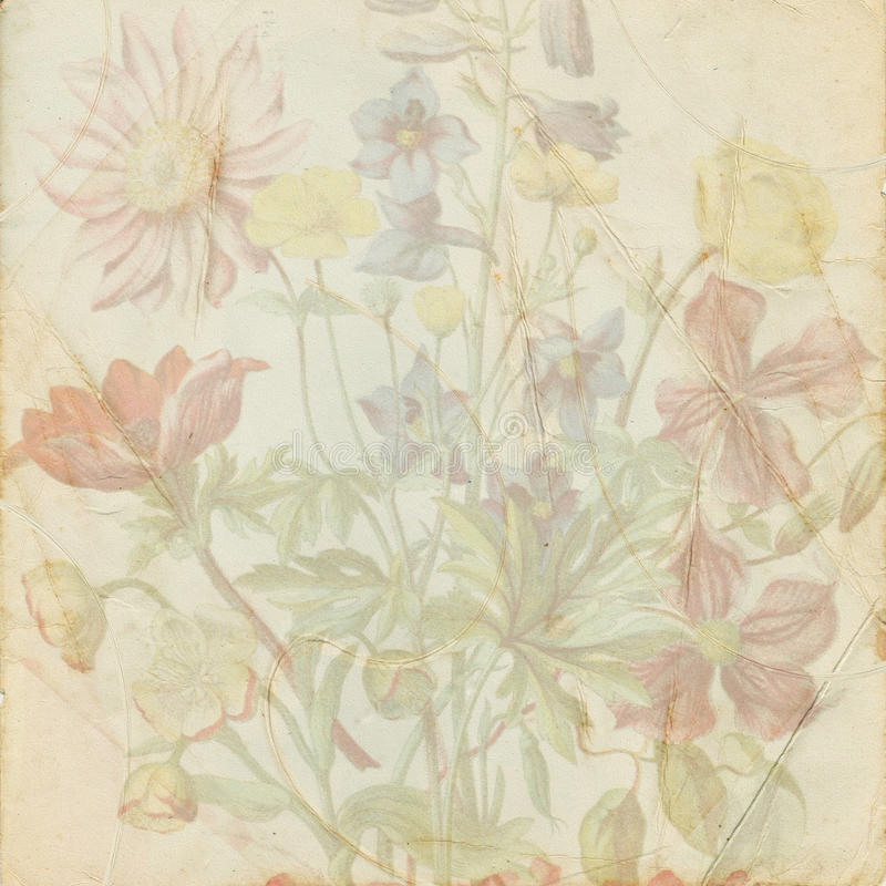 Vintage shabby flower paper. Old shabby paper with flowers royalty free stock photo