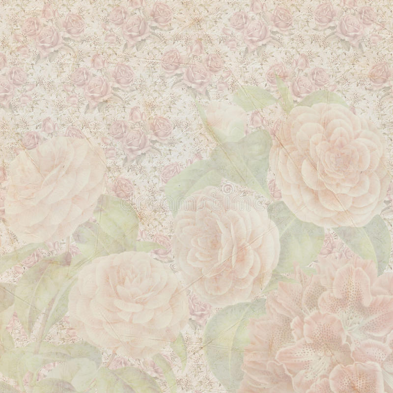 Vintage shabby flowers paper texture. For your next project stock photography