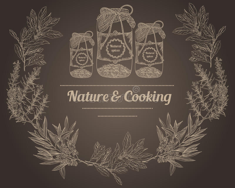 Vintage spice jars chalk board nature and cooking herbs vector illustration