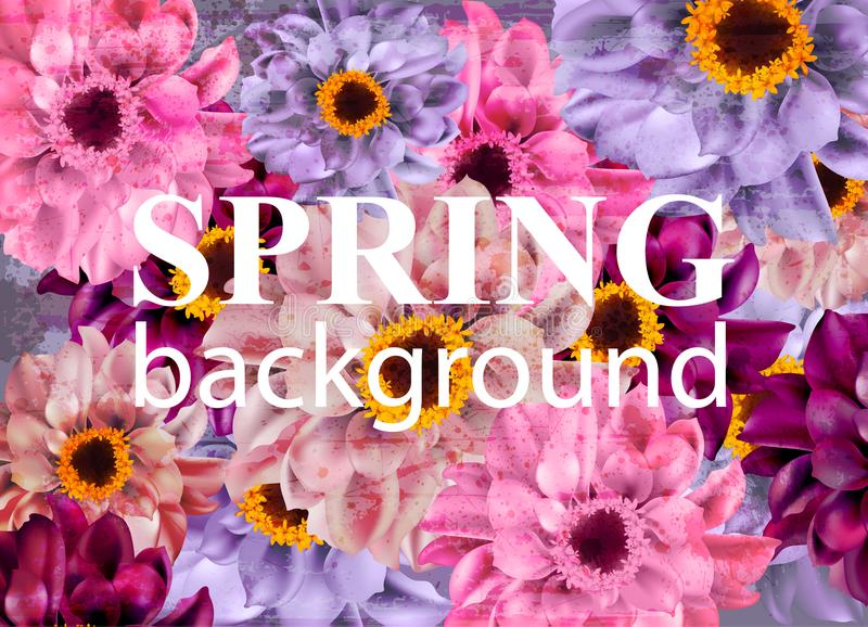 Vintage Spring background with colorful daisy flowers. Vector. Illustration stock illustration