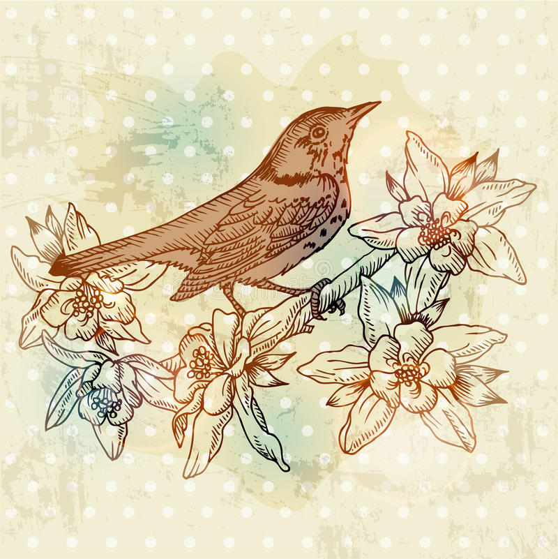 Download Vintage Spring Card With Bird Stock Vector - Image: 26800934
