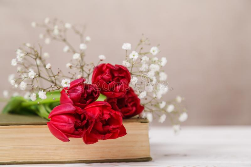 Vintage still Life with a spring red tulips and a book on a beige background. Mother`s day, women`s day concept royalty free stock photos