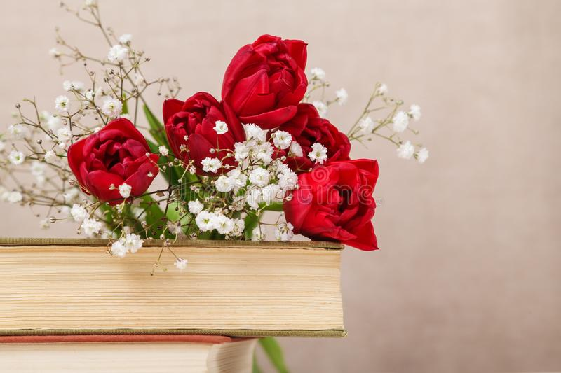 Vintage still Life with a spring red tulips and a books on a beige background. Mother`s day, women`s day concept stock photography
