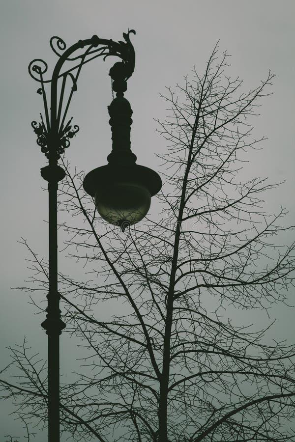 Download Vintage Streetlamp stock photo. Image of night, street - 38230310