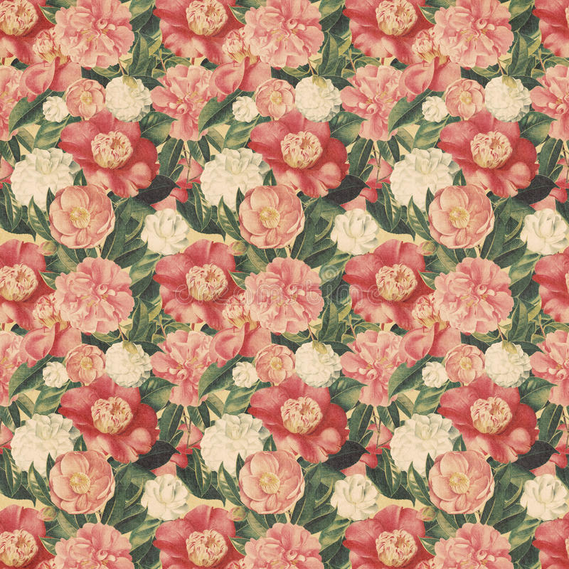 Download Vintage Style Floral Background With Pink Blooms Stock Illustration - Image: 23875238