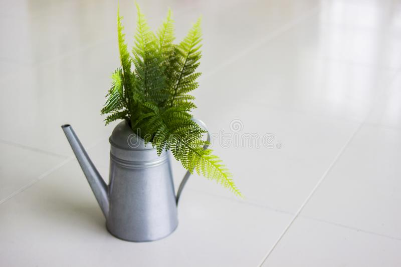 Vintage style watering can. Metal watering can with green fern. Close up vintage style watering can. Metal watering can with green fern. Gray vase. Watering can royalty free stock images