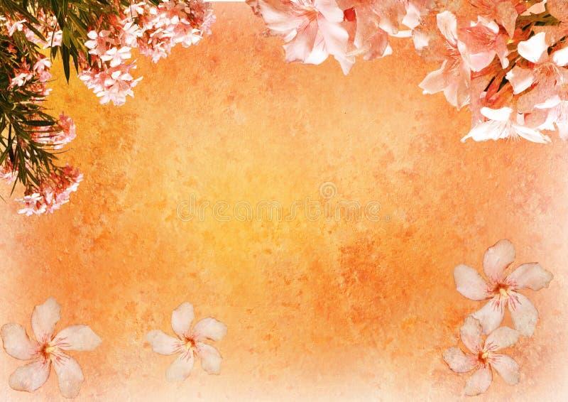 Vintage styled floral frame royalty free illustration