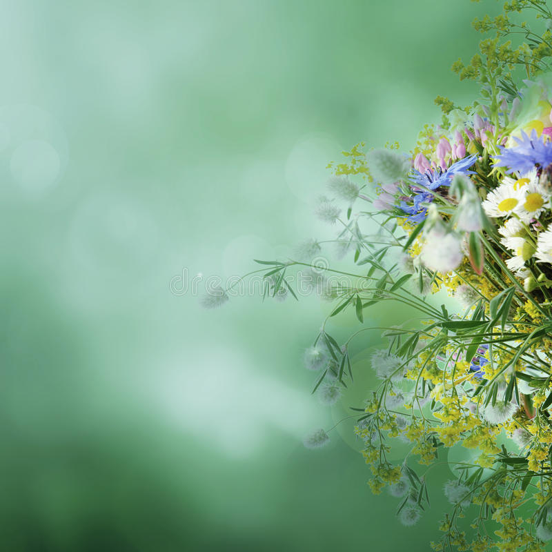 Vintage Summer Flowers Royalty Free Stock Photos - Image ...