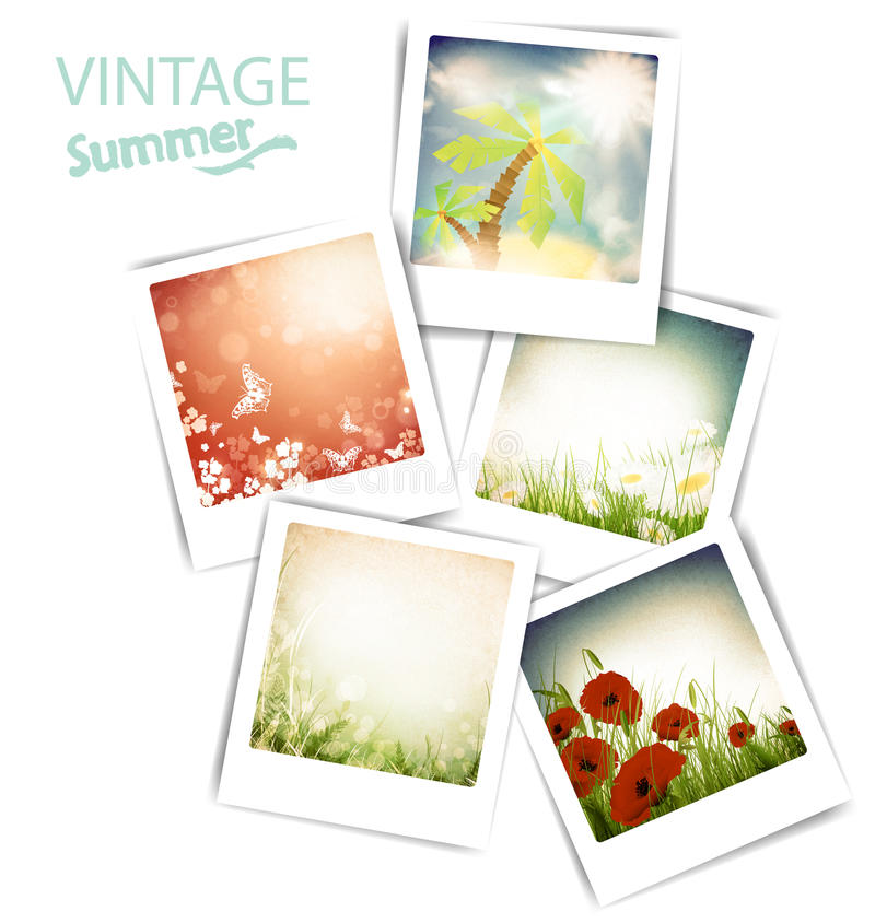 Download Vintage summer photos stock vector. Image of flora, blossom - 24022675