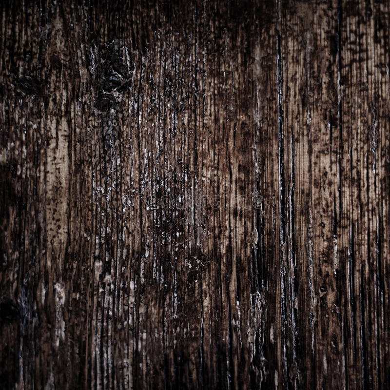 Vintage texture of bark wood natural background, dark brown colo stock photography