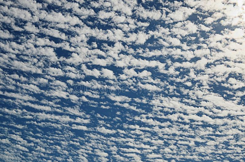 Texture of morning sky with many white clouds stock photo
