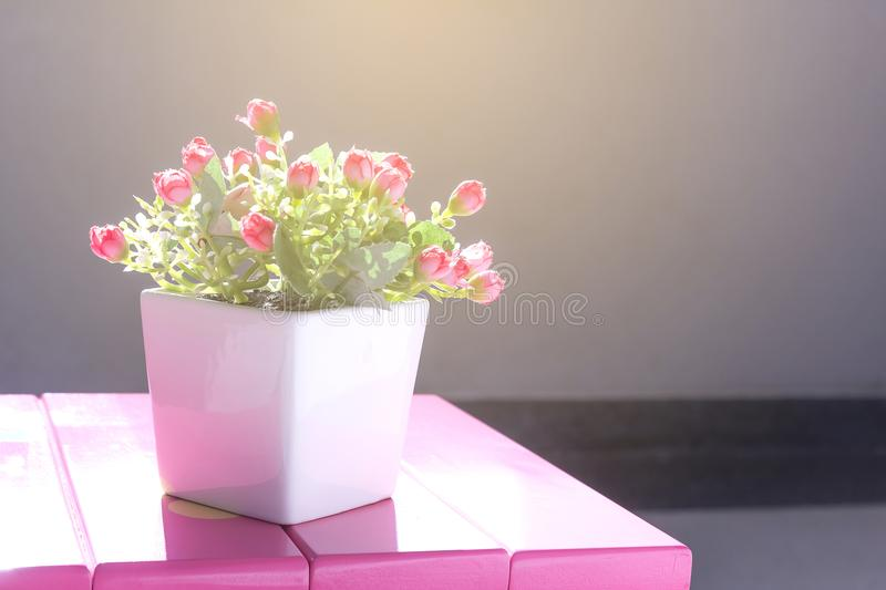 Good morning with flowers. Vintage tone, good morning with flowers in a pot on a pink chair royalty free stock photos