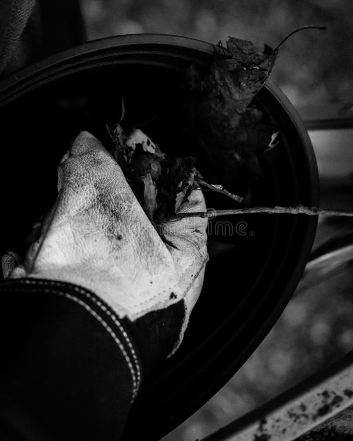 Filtered image close-up hand with gloves drop dried leaves and dirt into bucket from gutter cleaning. Vintage tone top view man hand in gloves holding dried royalty free stock photography